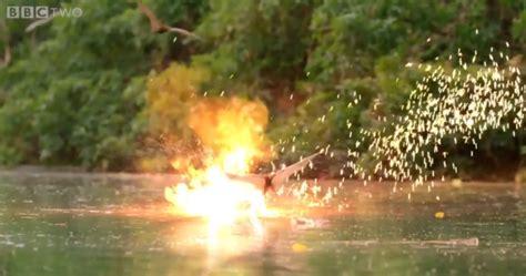 191 y si cocodrilos y murci 233 lagos tuvieran armas l 225 ser el