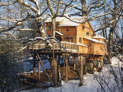 cabanes en bois dans les arbres kitmaisonbois kit ossature bois