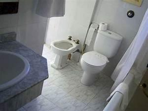 Ramoner Soi Même Sa Cheminée Assurance : remplacer soi m me des wc ~ Premium-room.com Idées de Décoration