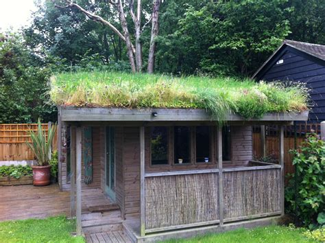 Garden Room With Living Roof by Diy Green Roof Building Guide By And Dusty Gedge