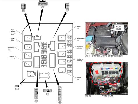 2005 Xterra Ecm Wiring Diagram by Nissan Xterra Fuel Location Indexnewspaper