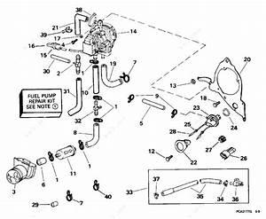 Evinrude 1996 225 - E225czede  Fuel Pump