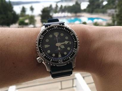 Citizen Promaster Automatic Diver Underrated Watches