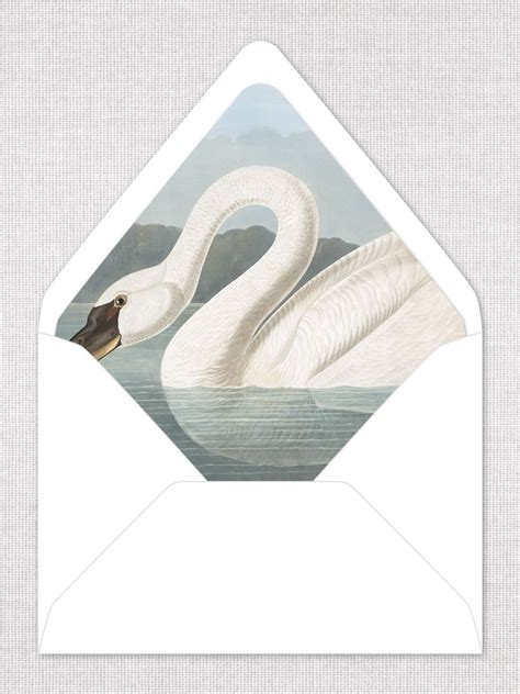 pin  karen mccreary  lovely  images envelope