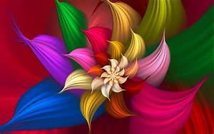 Colorful Abstract Flower wide Wallpaper - New HD Wallpapers