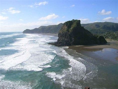 About Us Piha Realestate