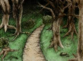 Colored Pencil Forest Drawings