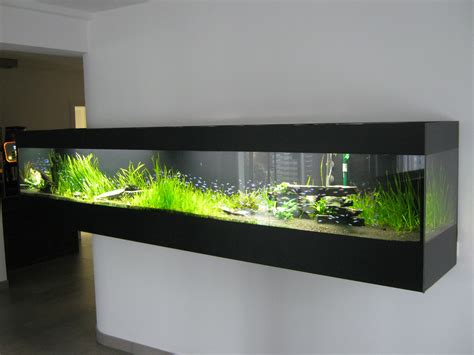 fish tank l images about fish tanks in the office on