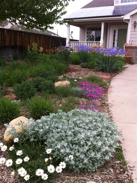 xeriscape yard xeriscaping mile high water talk