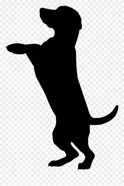 Silhouette Lab Clipart Dog Dogs Chocolate Getdrawings