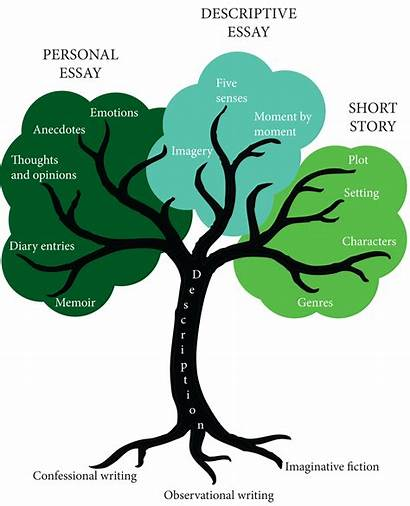 Tree Writing Essay Story Short Difference Diagram