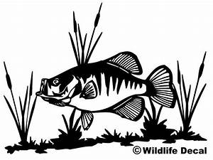 crappie and cattails decal md wildlife outdoors fishing With kitchen colors with white cabinets with native american stickers for trucks