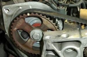 Dayco Tech Focus  Renault 1 9 Dci Timing Belt Kit Installation