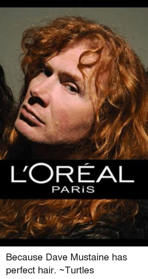 Loreal Paris Meme - loreal paris because dave mustaine has perfect hair turtles meme on sizzle
