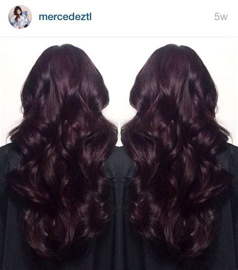 dark burgundy midnight ruby hair plum hair dark