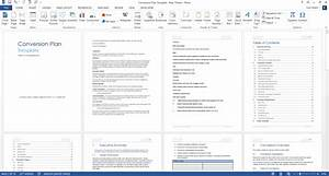 Executive Summary Format Template Conversion Plan Template Ms Word Templates Forms
