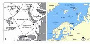 Barents   polarbearscience