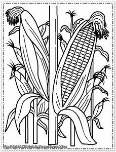 corn stalk coloring pages