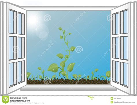 Offenes Fenster Bild by Vector Illustration Green Sprouts An Open Window Stock