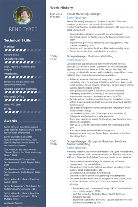 senior marketing manager resume sles visualcv resume