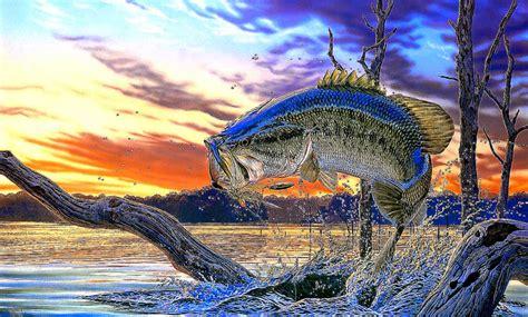 fishing screensavers and wallpaper wallpapersafari