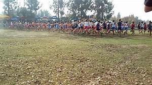 Boys 5K Final - Division 1 | CIF State Cross Country ...