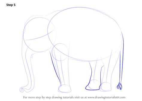 learn   draw  indian elephant wild animals step
