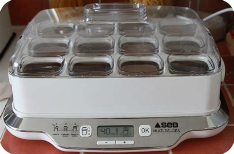 recettes yaourti 232 re seb multi d 233 lices 12 pots