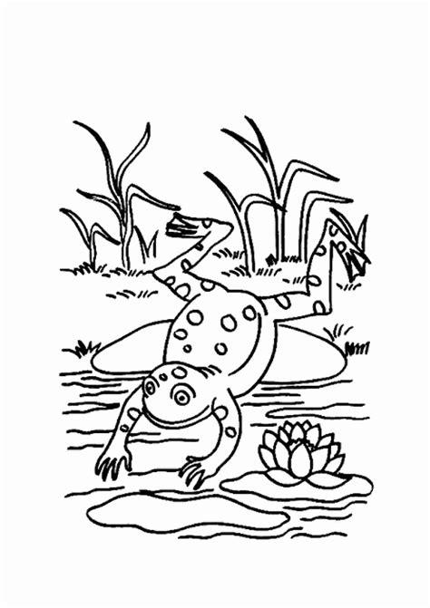 malvorlagen fur kinder ausmalbilder frosch kostenlos page    konabeun