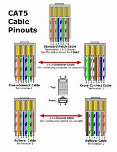 With Cat 5 Rj45 Wiring