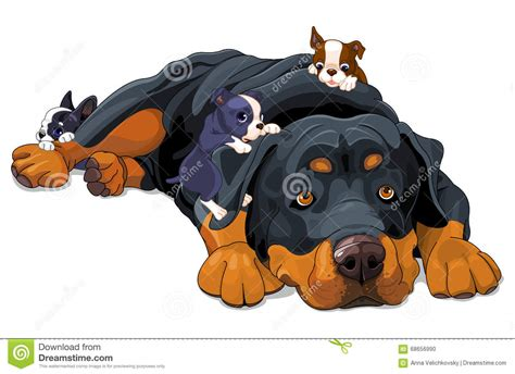 Rottweiler Cartoons, Illustrations & Vector Stock Images