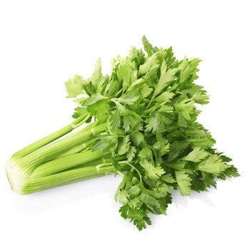 cuisiner celeri branche le céleri branche préparer cuire associer cuisiner