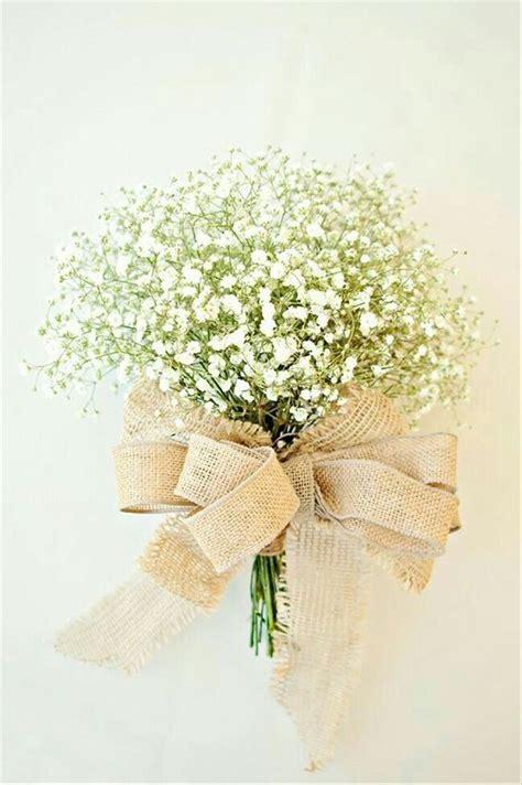jual bunga potong baby breath impor  tangkai  lapak