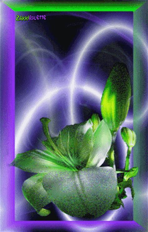 daftar fotogambar animasi bunga mawar melati bergerak