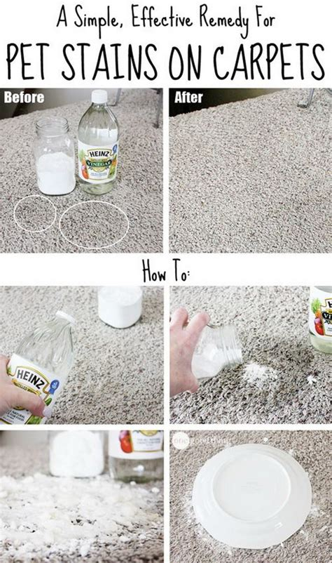 homemade carpet cleaning solutions  tips noted list