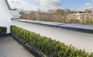 Foto Giardino Pensile Su Terrazzo Di Sole Verde 108820 Habitissimo