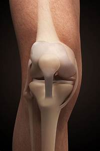 What Exercises Help With Acl Rehabilitation