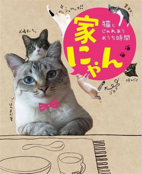 くるま日記?   SEIのブログ一覧   - みんカラ   猫, ブログ, みんカラ