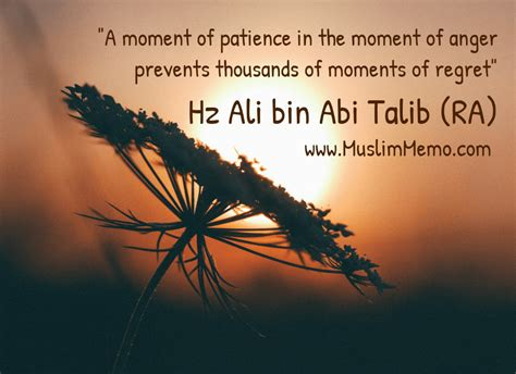 islamic quotes  patience  quotes   essence