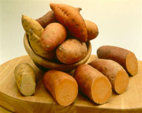 sweet potatoe sweet potatoes tasty farmer