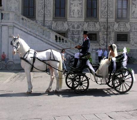 Matrimonio In Carrozza by Matrimonio Carrozza 11309 Sposalicious