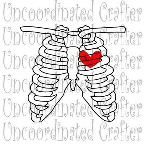 Almost files can be used for commercial. Chest xray svg/ radiology svg// radiologist svg// rad tech ...