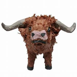 Western Texas Longhorn Pinata - Custom Party Pinatas