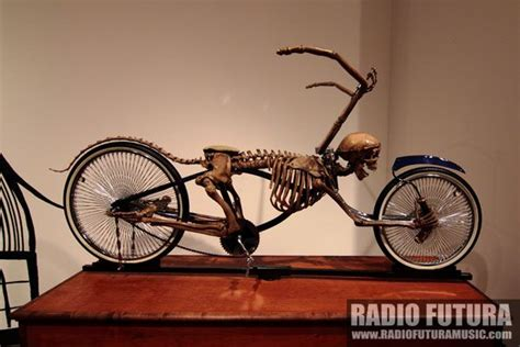 Skeleton Lowrider Bike « Radio Futura, Online Source For