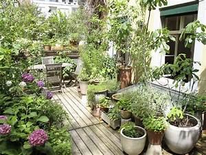 Jardin Et Balcon : le balcon sauvage ~ Premium-room.com Idées de Décoration