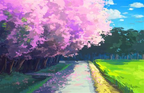 anime cherry blossom hd wallpapers desktop  mobile