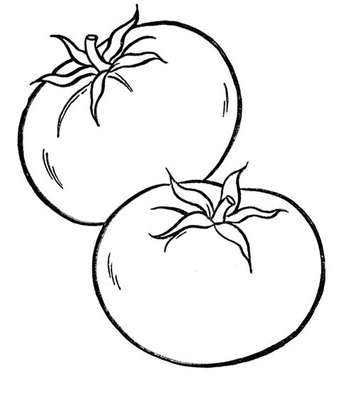 vegetables tomato vegetable coloring pages