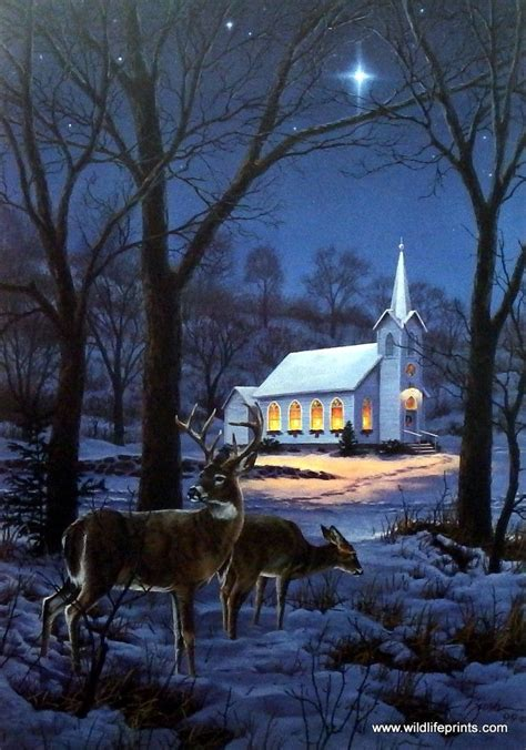 darrell bush  midnight clear paintings deer elk