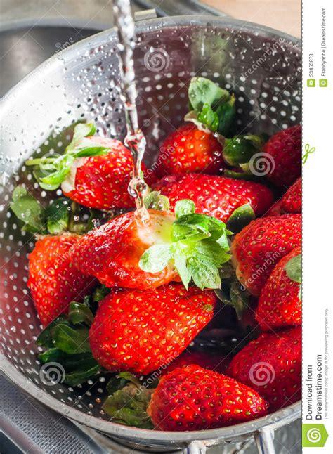 water washing  strawberries stock image image
