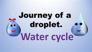 Rain Drop Water Cycle Diagram